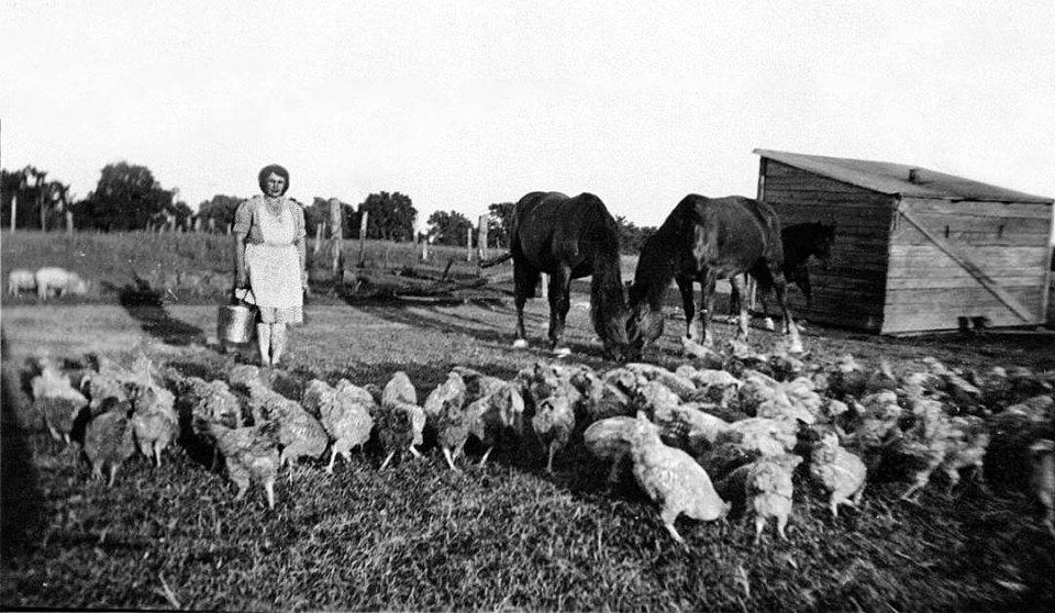 Photo de la Famille Hall sur leur ferme en 1935